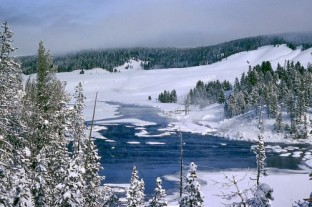 Winter im Yellowstone-Nationalpark